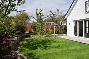 BXL170354_rear garden